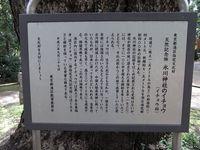 Tv_20100429_10
