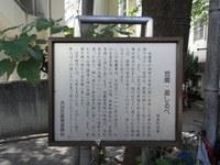 Tv_20091018_08_2