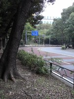 Tv_20091108_00
